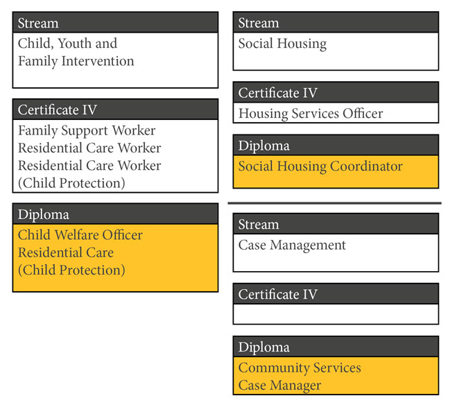 diploma in community services